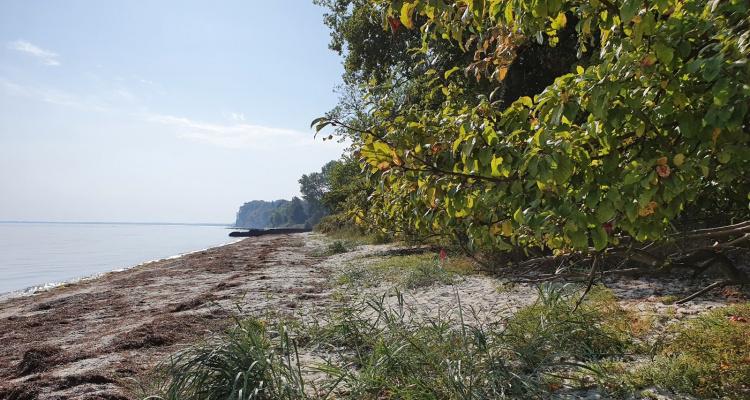 Strandparken7
