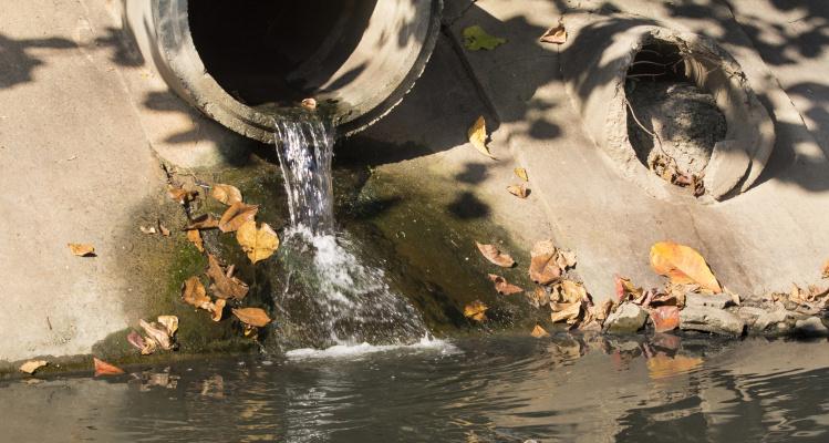 Billede af spildevandsudløb