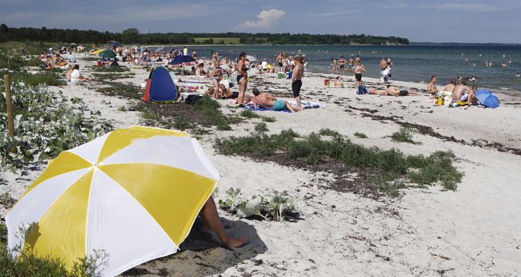 Feddet strand