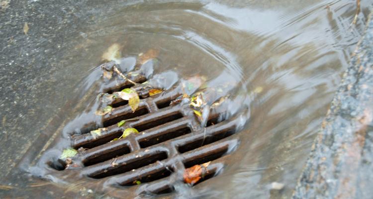 Regnvand i gaderist